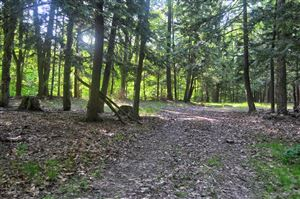 Photo of Lost Canyon Road #4, Pentwater, MI 49449 (MLS # 19026601)