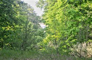 Photo of Lost Canyon Road #3, Pentwater, MI 49449 (MLS # 19026602)