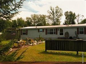 Photo of 65020 White Pine Drive, Sturgis, MI 49091 (MLS # 19025622)
