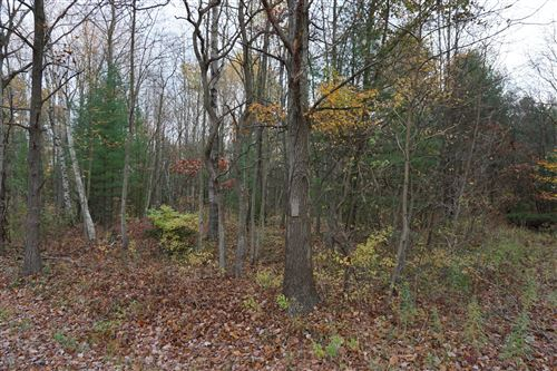 Photo of 0 W McMillan Road, Muskegon, MI 49445 (MLS # 21011629)