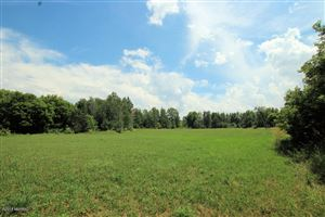 Photo of Parcel B 8 Mile Road, Stanwood, MI 49346 (MLS # 18033633)