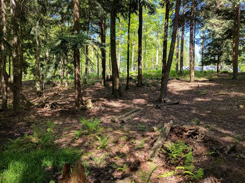 Photo of V/L Glennwood Road #5, Ludington, MI 49431 (MLS # 18055637)