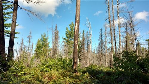 Photo of 23305 Duck Lake Trail, Newberry, MI 49868 (MLS # 19012638)