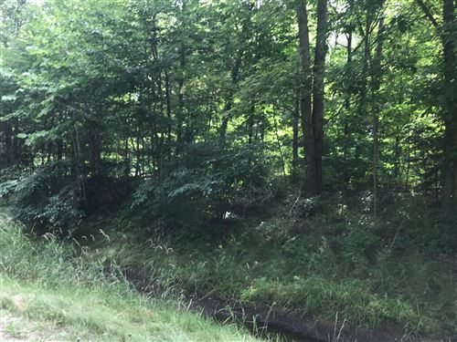 Photo of 0 152nd Avenue #Lot 2, West Olive, MI 49460 (MLS # 20029655)