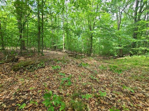 Photo of 112 Logging Trail, Leroy, MI 49655 (MLS # 21022656)