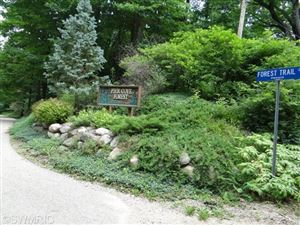 Photo of Lot 5 Forest Trail Circle, Fennville, MI 49408 (MLS # 16006658)