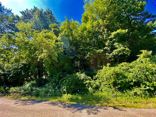 Photo of 6438 E 134th Avenue, Saugatuck, MI 49453 (MLS # 20031658)