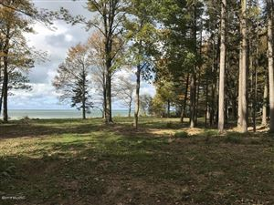 Photo of 2572 A Lakeshore Drive, Fennville, MI 49408 (MLS # 17049665)