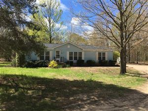 Photo of 3336 CR 687, South Haven, MI 49090 (MLS # 19020669)