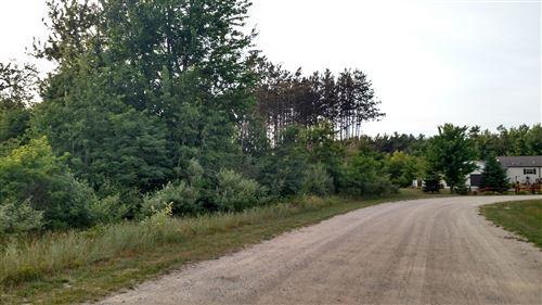 Photo of N Pine Ridge Drive #31, Ludington, MI 49431 (MLS # 20051673)