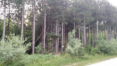 Photo of N Pine Ridge Drive #36, Ludington, MI 49431 (MLS # 20051677)