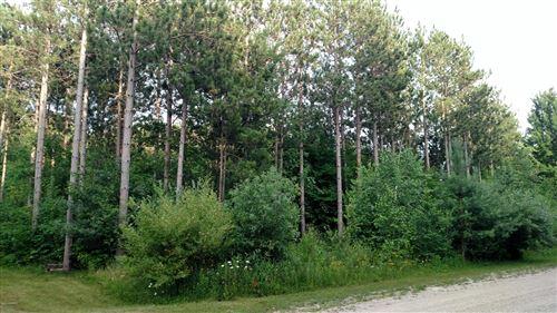 Photo of N Pine Ridge Drive #51, Ludington, MI 49431 (MLS # 20051680)