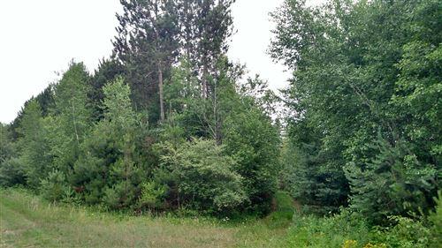 Photo of N White Birch Drive #43, Ludington, MI 49431 (MLS # 20051689)