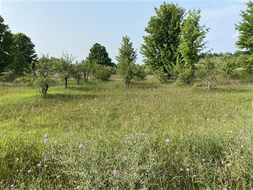 Photo of 10 Acres, Alkire Road, Bear Lake, MI 49614 (MLS # 21096699)