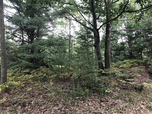 Photo of Lot 3 Harrison Road, Mears, MI 49436 (MLS # 19044702)