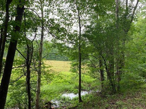 Photo of 20 A (B) E Townline, Free Soil, MI 49411 (MLS # 21097708)