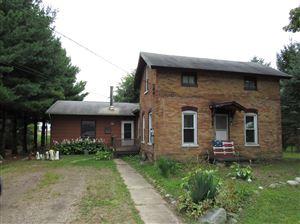 Photo of 109 Vreeland Street, North Adams, MI 49262 (MLS # 19043711)
