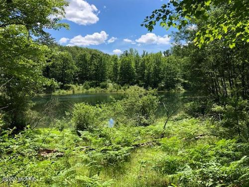 Photo of 12065 Lila Court #37, Canadian Lakes, MI 49346 (MLS # 20022711)