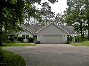 Photo of 8153 W Bluegill Drive, Irons, MI 49644 (MLS # 18053712)