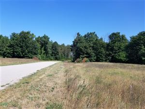 Photo of Lot C Meadow View Lane, Hart, MI 49420 (MLS # 18041716)