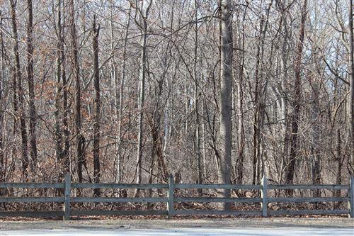 Photo of 0 Lot 52 & Lot 56 Wildwood, Bridgman, MI 49106 (MLS # 20004716)