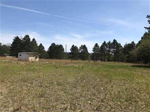 Photo of 7093 W 5 Mile Road, Irons, MI 49644 (MLS # 19000747)