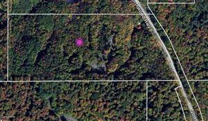Photo of 18.75 acre M-22, Arcadia, MI 49613 (MLS # 19044748)