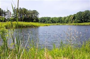 Photo of Lot B13 River Trace, West Olive, MI 49460 (MLS # 19015764)