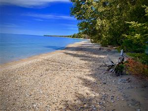 Photo of 8897 * Simmons Bluff Drive #Lot 7, Ellsworth, MI 49729 (MLS # 19016777)