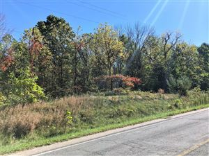 Photo of 3 C County Road 687, South Haven, MI 49090 (MLS # 18051789)