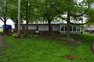 Photo of 691 W Channel Drive, Coldwater, MI 49036 (MLS # 19020793)