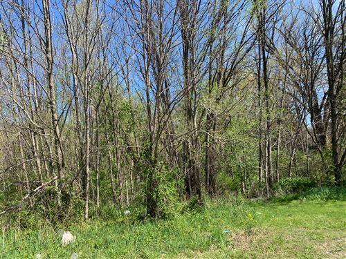 Photo of 0 Sawyer Road, Sawyer, MI 49125 (MLS # 21014800)