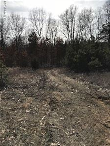 Photo of Lot 45 Spring View Ct., Middleville, MI 49333 (MLS # 19002805)