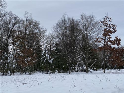 Photo of 7262 Riverside Drive, Manistee, MI 49660 (MLS # 20002810)