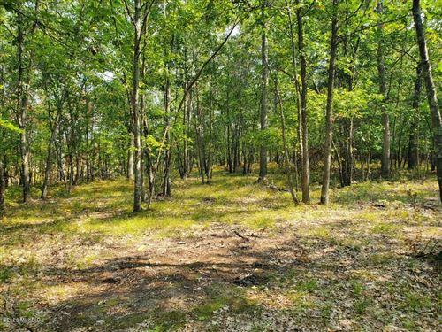 Photo of N Beaver Trail, Bitely, MI 49309 (MLS # 20039826)