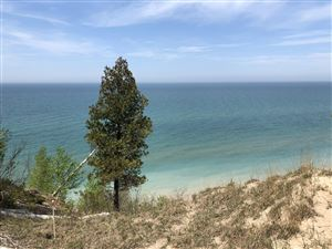 Photo of Lots A&B S Lakeshore Drive, Ludington, MI 49431 (MLS # 19016828)