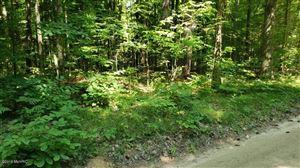 Photo of 17339 Old Logging Road, Hersey, MI 49639 (MLS # 19013846)