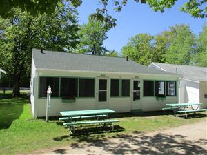 Photo of 3181 N LAKESHORE Drive #Dove & Swan, Ludington, MI 49431 (MLS # 19014849)