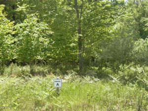 Photo of Parcel A (Off) Kerry Road, Manistee, MI 49660 (MLS # 17025854)