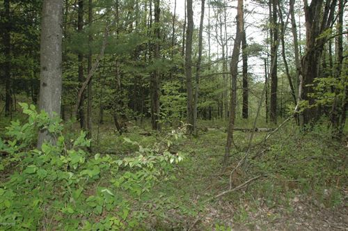 Photo of Lot 10 Karley Court Court, Luther, MI 49656 (MLS # 20018868)