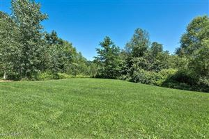 Photo of 19110 White Pine Drive #Lot 12, New Buffalo, MI 49117 (MLS # 17037907)