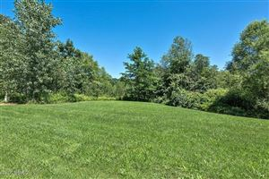 Photo of 13545 Trillium Lane #Lot 21, New Buffalo, MI 49117 (MLS # 17037908)