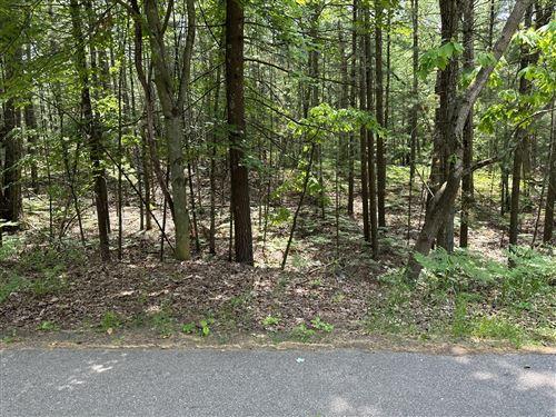 Photo of crow Lane #105, Pentwater, MI 49449 (MLS # 21025915)