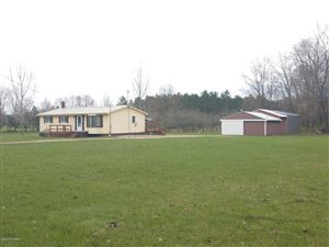 Photo of 4631 12 Mile Road, Remus, MI 49340 (MLS # 19018922)