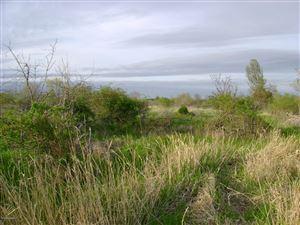 Photo of W Merkey Road, Manistee, MI 49660 (MLS # 19022922)