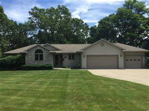 Photo of 7460 Anthony Street, Whitehall, MI 49461 (MLS # 19030925)