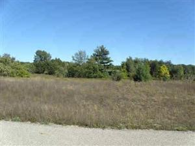 Photo of lot10 Trim Lake View Estates, New Era, MI 49446 (MLS # 10007931)