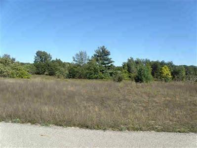 Photo of 11 Trim Lake View Estates, New Era, MI 49446 (MLS # 10007932)