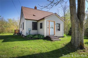 Photo of 3359 Truman Street, Conklin, MI 49403 (MLS # 19018940)