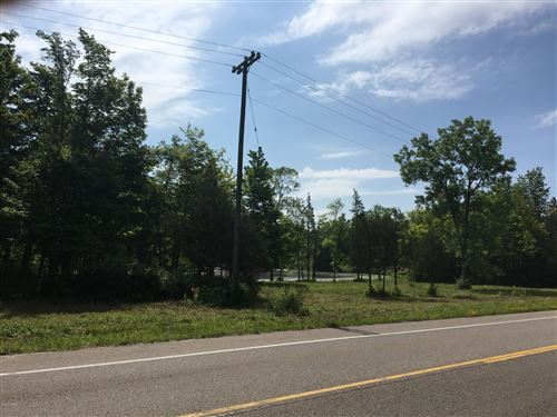Photo of Lot A Blue Star Highway, South Haven, MI 49090 (MLS # 21000942)
